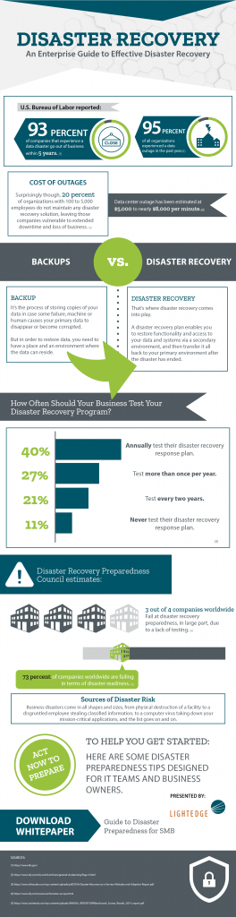 Disaster Recovery: An Enterprise Guide Infographic